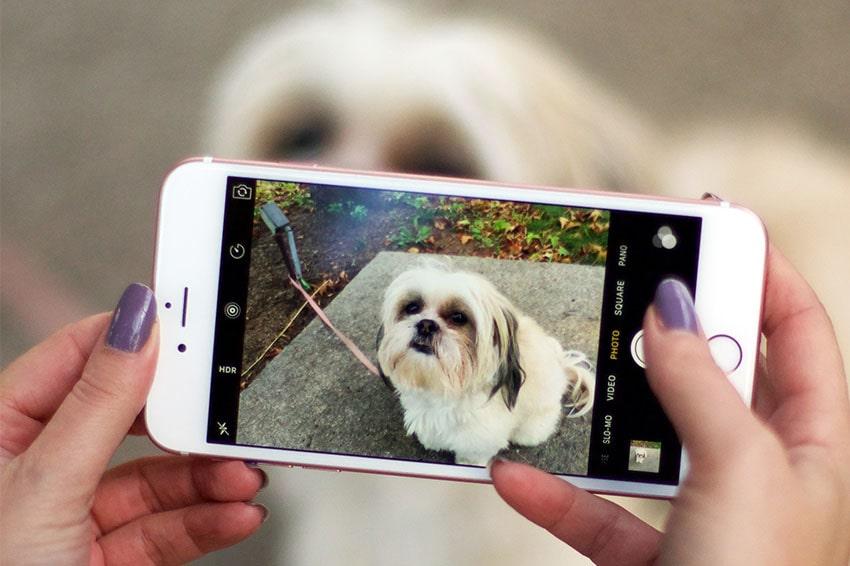 iPhone 6 Plus 16GB Cũ Chính Hãng iPhone 6 plus 16gb chinh hang quoc te likenew camera viendidong