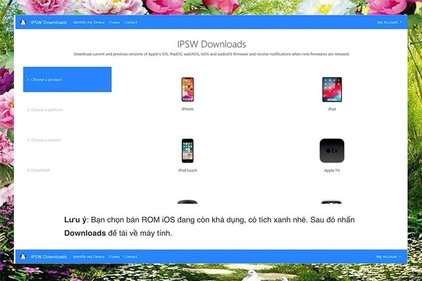 Cách hạ cấp iOS 14 Beta xuống iOS 13.5.1 - bước 2