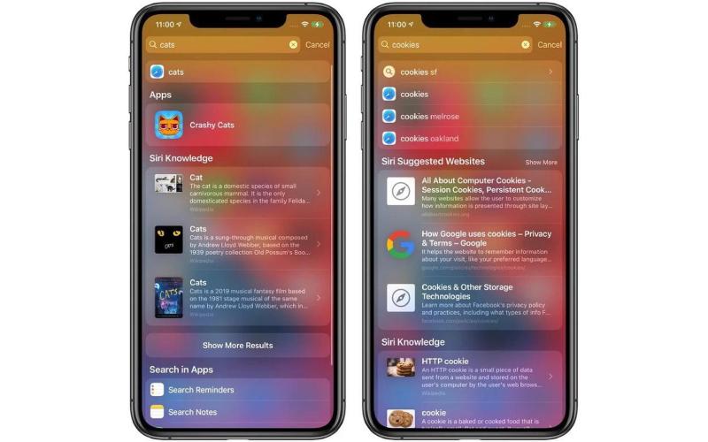 iOS 14 beta 14 được cải thiện thêm tính năng tìm kiếm chi tiết
